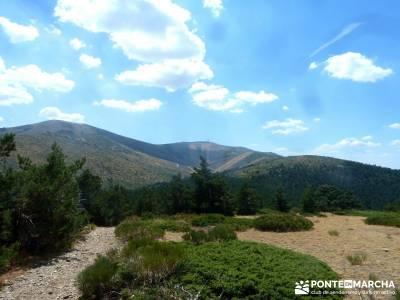 Loma del Noruego; Pinares Valsaín; viaje septiembre; excursiones de senderismo;viajes agosto